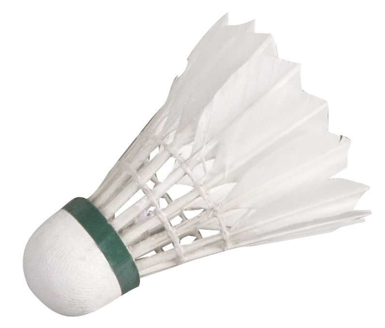 Badminton%20%C5%BEogice%20Hudora%20Speed.jpg