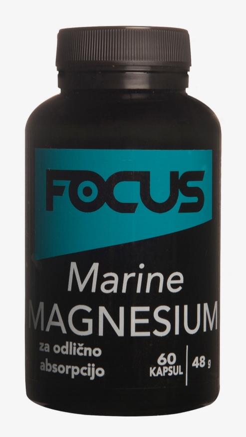 focus_marine.jpeg
