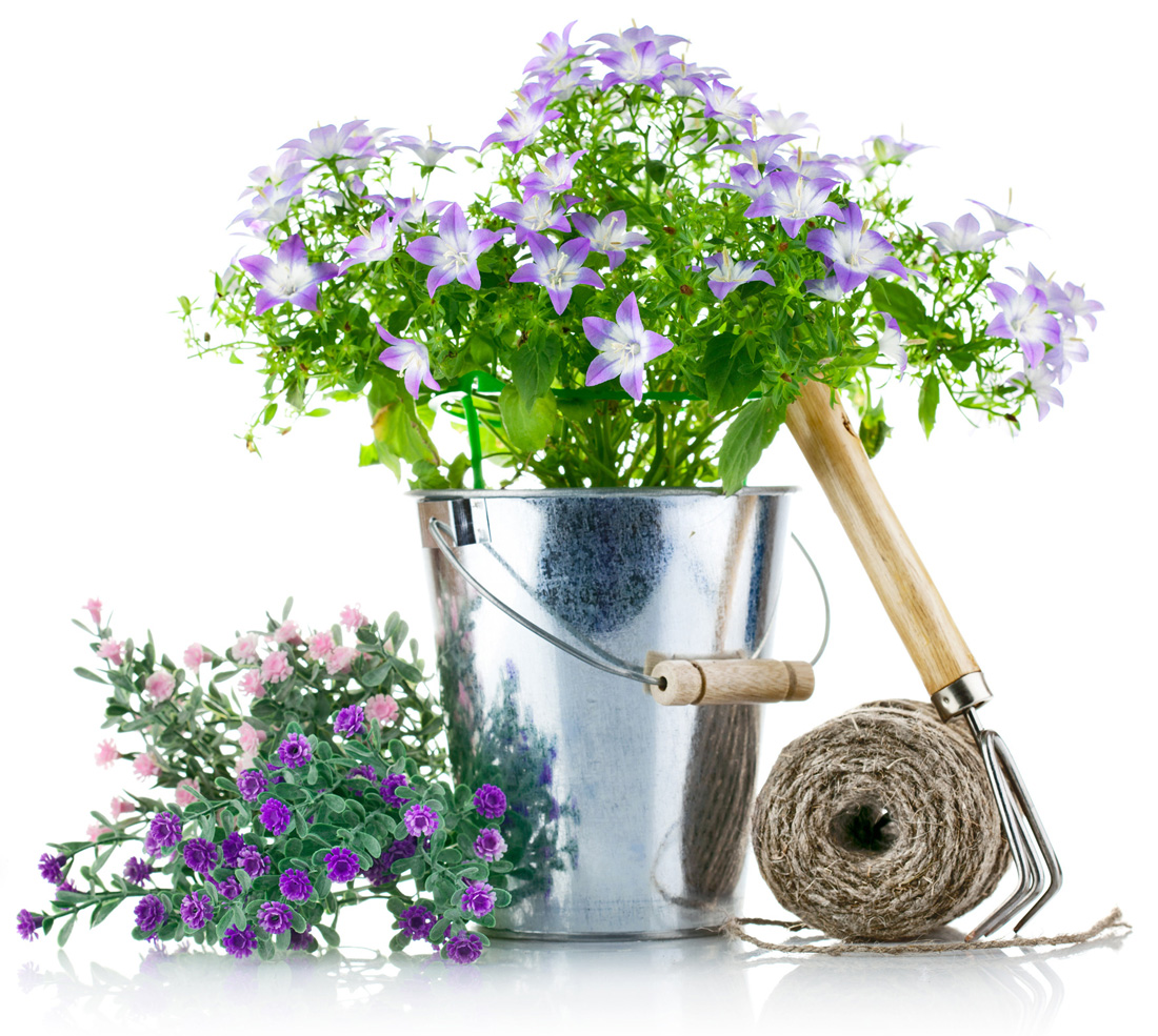 Vrtnarstvo8.jpg