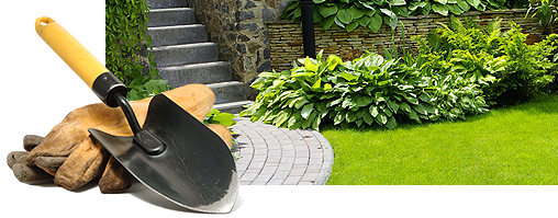lawn-maintain-1.png
