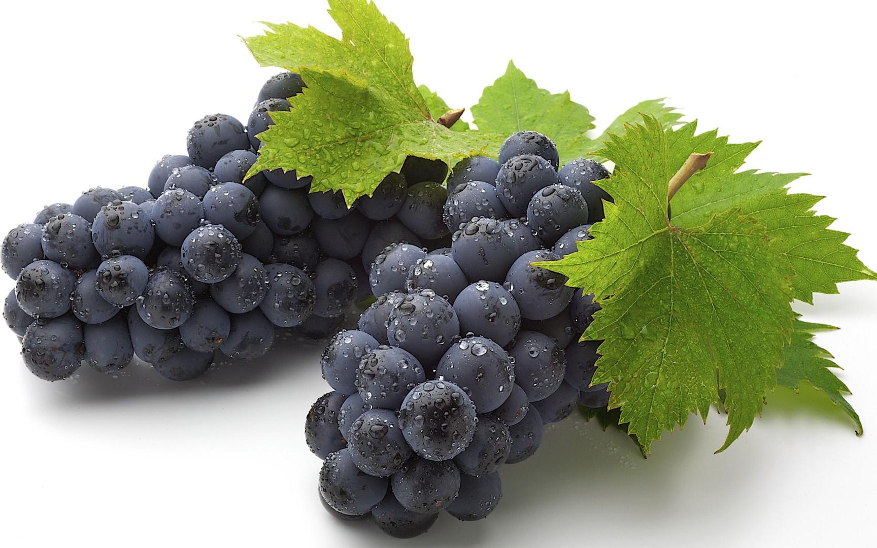 grozdje_web.jpg