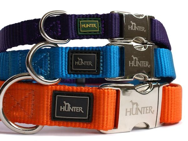 hunter-nylon-dog-collar-with-alu-strong-clip-colours-cyan-item-required-small-2849-p.jpg