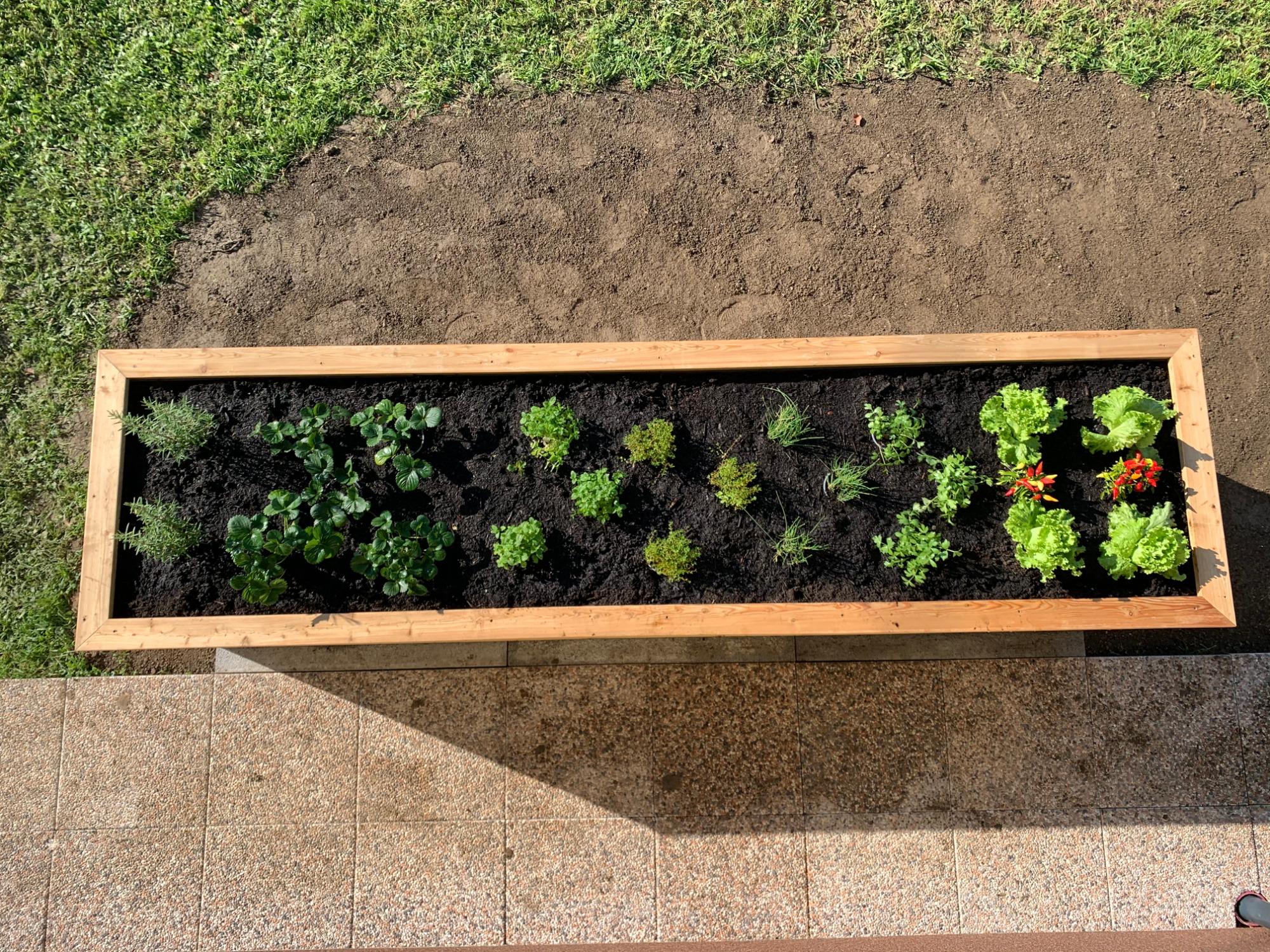 visoke_grede_expert_naravno_vrtnarjenje_2.jpg