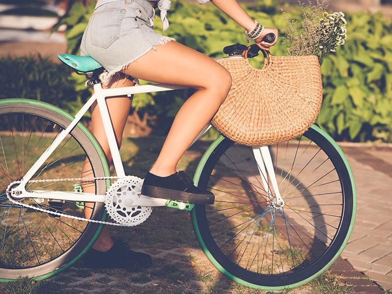 kolesarnice_alpe_adria_trail.jpg