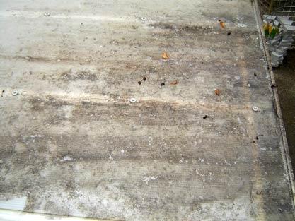 Polikarbonatna kritina pred čiščenje,