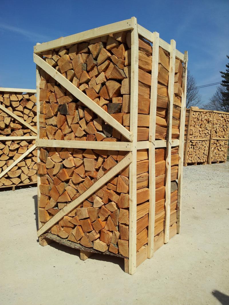 drva_velika-6.jpg