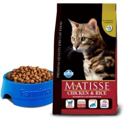 Matisse_ChickenRice-1.JPG