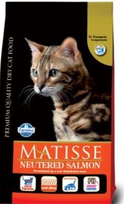 Matisse_Neutered_Salmon.JPG