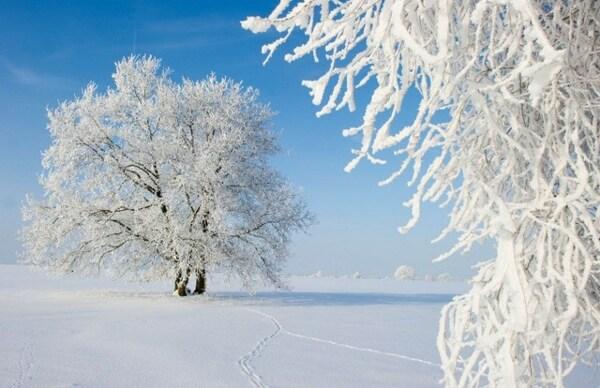 zima.jpeg