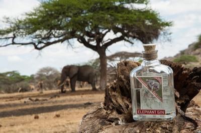rr_selection_gin_elephant_je_okolju_prijazen.jpg