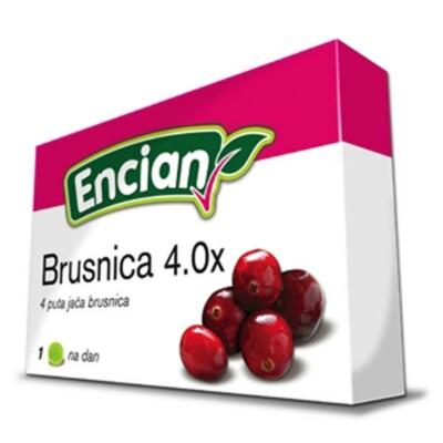 brusnica_40x_16pastil_2.jpg